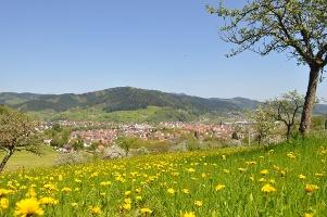 Haslach - Der Panoramaweg Süd
