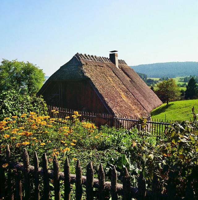 Blick ins Sulzbachtal vom Kapfhäusle