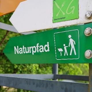 Der Naturpfad ist mit grünen Wegweisern signalisiert.