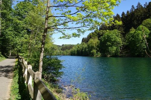 Lehrpfad & Spazierweg Fürwigge-Talsperre - Staunen & Entdecken