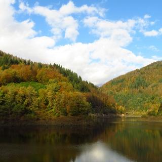 Enjoy your last day of hiking the Schluchtensteig