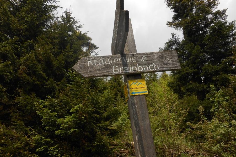 Wegweiser Kräuterwiese-©Quelle: Chiemsee-Alpenland Tourismus