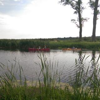 Zwischen Niedermooren und Feuchtwiesen können Kanufahrer auf der Warnow die Stille der Natur genießen.