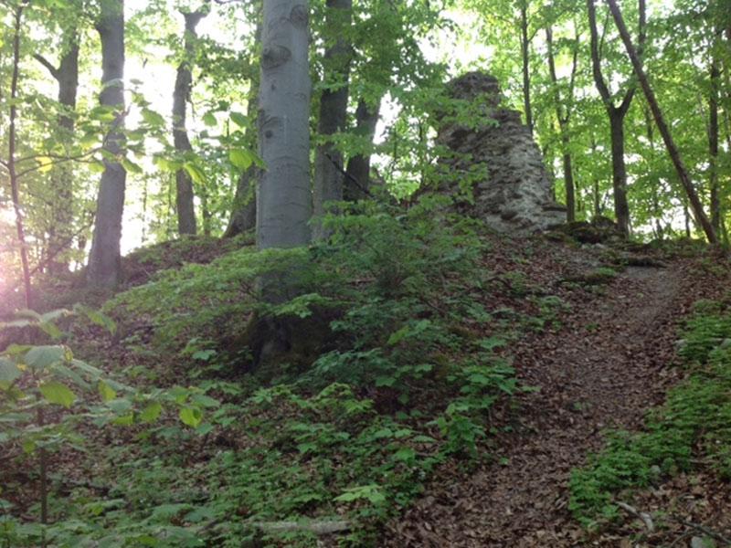 Steiler Anstieg, der Fußweg zur Ruine Werdeck   - © Quelle: Antje Kunz
