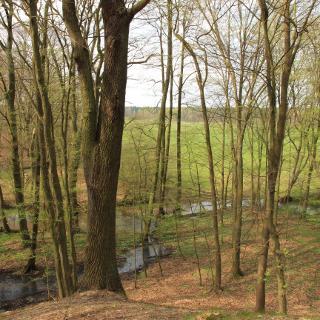 Ausblick von den Eichbergen