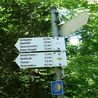 Wegweiser kurz nach St. Märgen