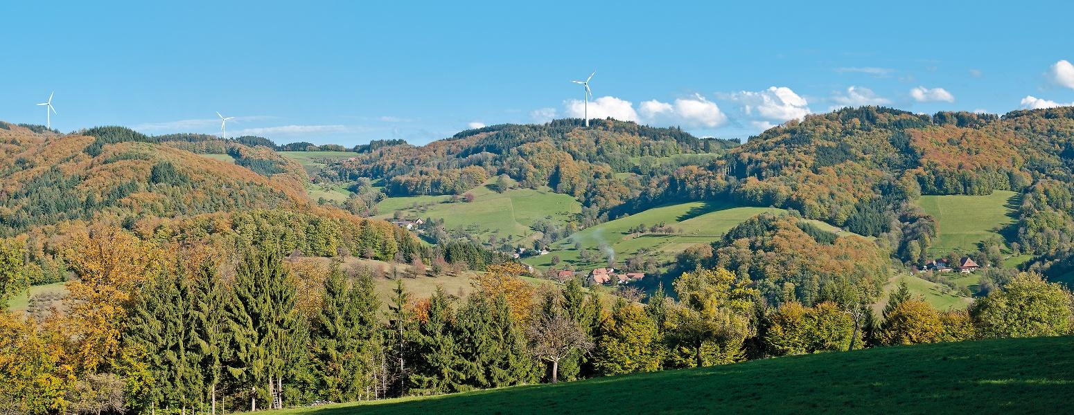 Historischer Wanderweg in Freiamt