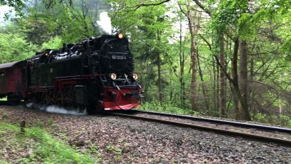 Harzer Schmalspurbahn en passant