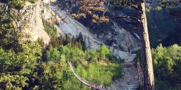 Pont suspendu «Bhutanbrücke» dans le parc naturel Pfyn-Finges.