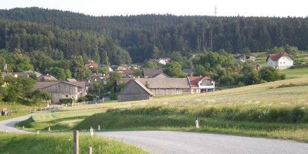 Ausblick auf den Ort Wiesenreith