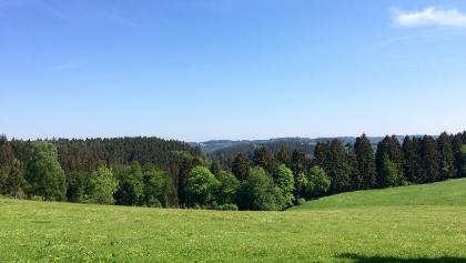 Ausblick bei Helberg