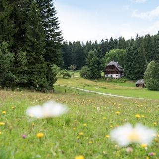 Schwarzwaldhof im Spechtloch