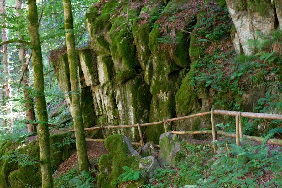 Albsteig Schwarzwald: Görwihl - Tiefenhäusern