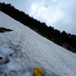 Schneefeld auf 1600 Hm.