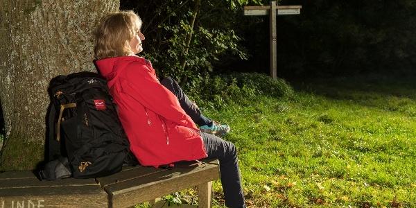 Frau sitzt auf einer Bank und lehnt am Baum
