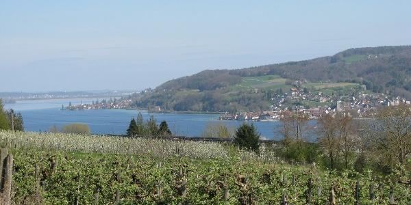 Blick vom Panoramaweg