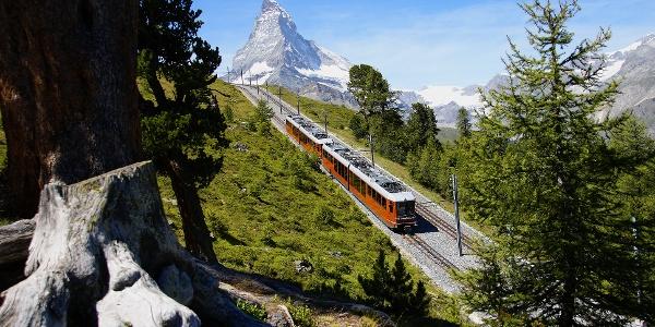 Trajet avec le Gornergrat Bahn jusqu'au point de départ