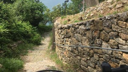 Trial Tellaro: Unterer Teil entlang des Küstenwanderwegs