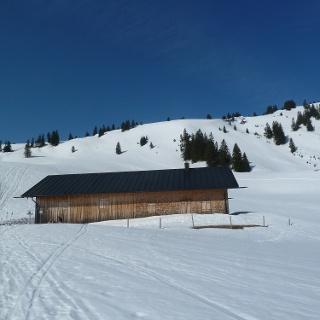 Pfrontner Alpe (1456 m) im Winter