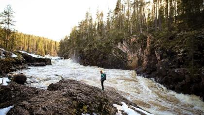 Kiutaköngäs springflood in Oulanka National Park