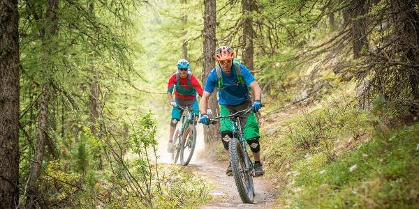 Die Yo-Yo-Tour bietet Flow pur: wie hier auf dem letzten Wald-Abschnitt etwas oberhalb von Zermatt