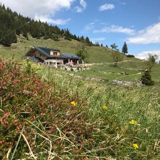 Astenau Alpe