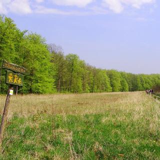 auf dem Kolonnenweg der ehemaligen innerdeutschen Grenze