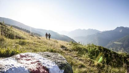 Hikers in the Swiss National Park