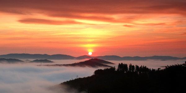 Sonnenaufgang Wartholzkopf
