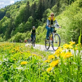 Der Radweg R5 von Mürzzuschlag nach Mürzsteg