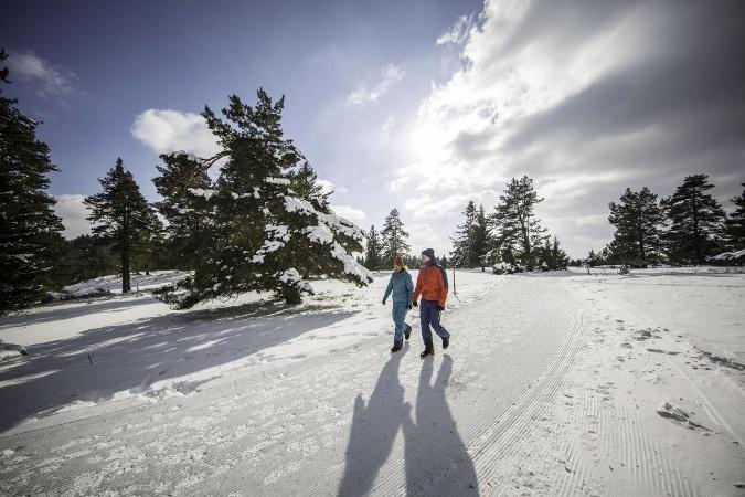 Wanderer auf dem Heersberg