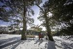 Winterimpression Premium-Winterwanderweg Schneewalzer