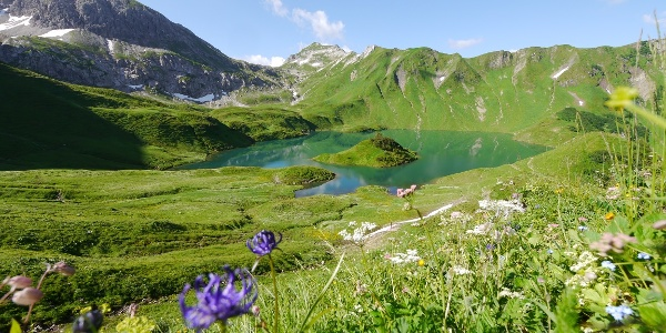 מבט על העמק בו מצוי אגם שרקזה