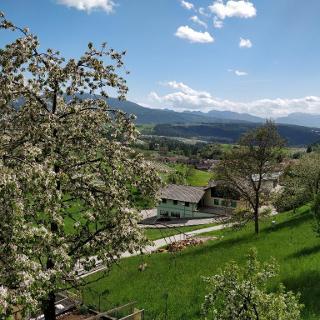 Panorama da Castelfondo
