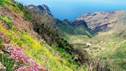 Teno-Gebirge Richtung Mirador Cruz de Hilda / Masca