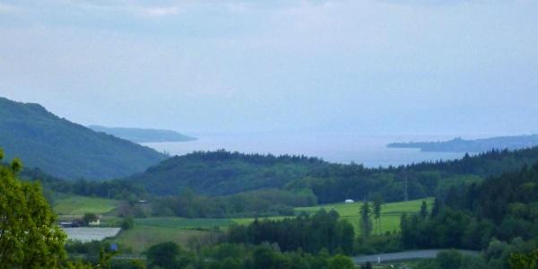 Blick von der Nellenburg auf den Bodensee
