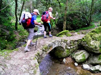 Pilgern - gemeinsam über Stock und Stein