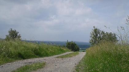 Rosenthal-Heide