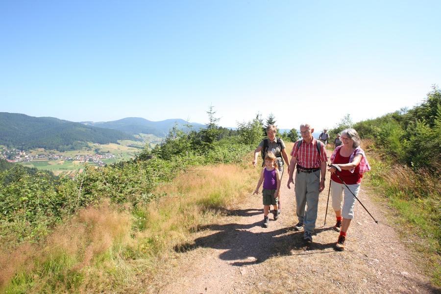 Großer Hansjakobweg 4. Etappe: Zell a. H. - Steinach