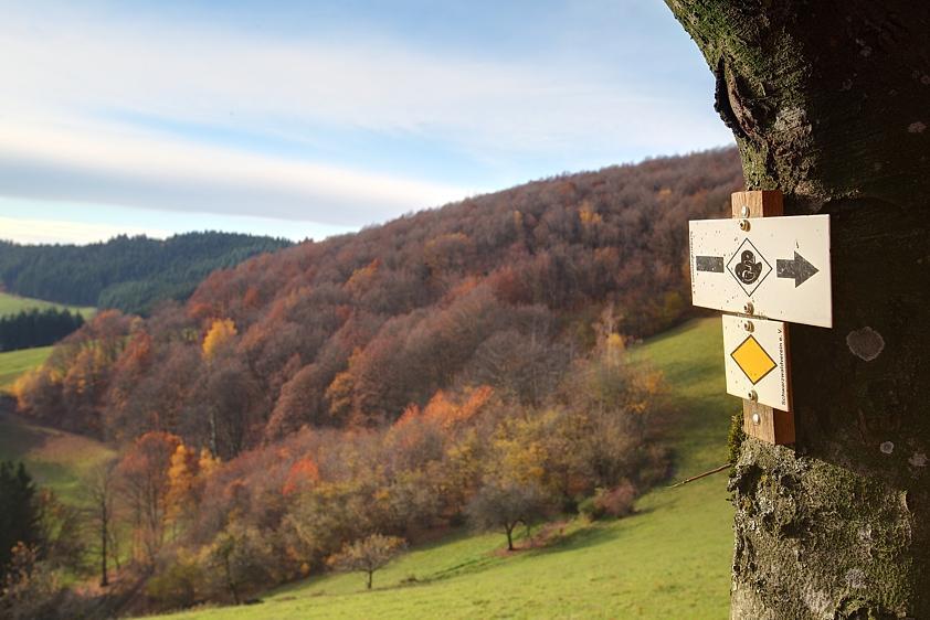 Grosser Hansjakobweg 6. Etappe: Biereck - Haslach