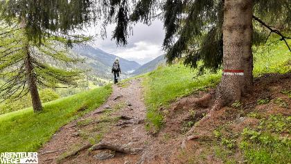 Wandern ohne Gepäck auf dem Ultner Höfweg.