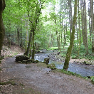 Weg entlang des Bogenbachs