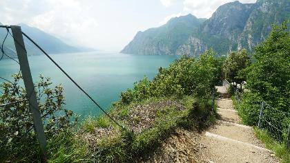 Wanderweg zum Monte Brione