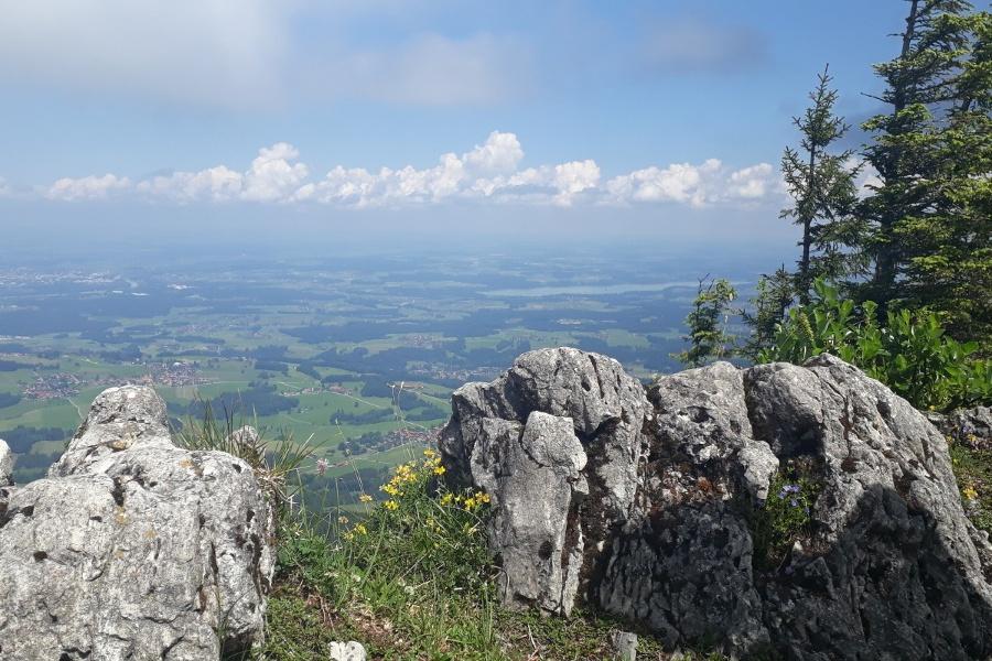 Panoramablick von der Hochries ins Alpenvorland