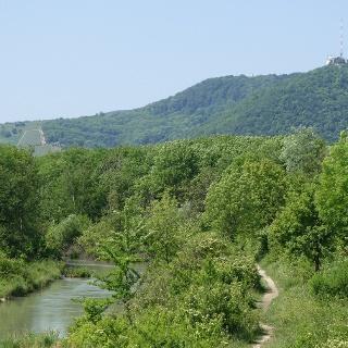 Blick vom Marchfeldkanal zum Leopoldsberg