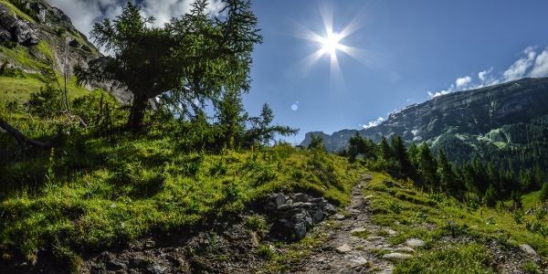 Alpage de Clabinu au-dessus de Loèche-les-Bains
