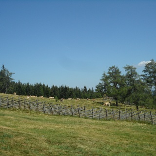 Unterauerlinger Hütte: Ausblick