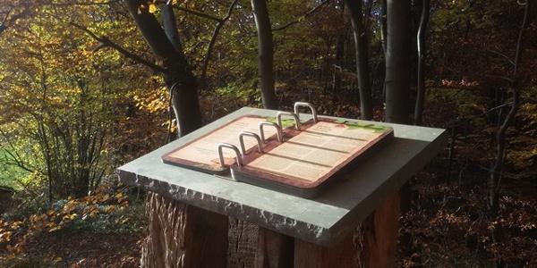 Naturbuch zwischen Elbrinxen und Rischenau
