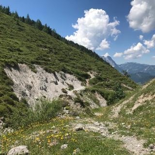 Wandern über Almwiesen