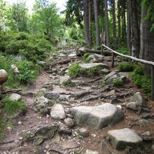 Foto von Wanderung: Über den Eckerlochstieg auf den Brocken • Harz (08.06.2018 16:38:27 #1)